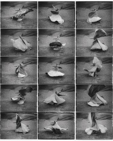 Dance studies based of Loie Fuller performances